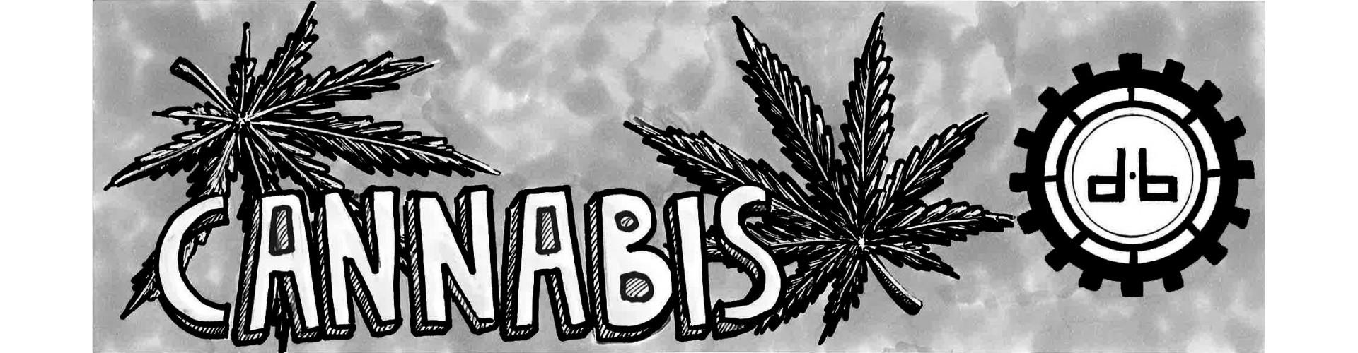 Sweat Feuille de Cannabis Homme pour les adeptes de la Weed, sweat