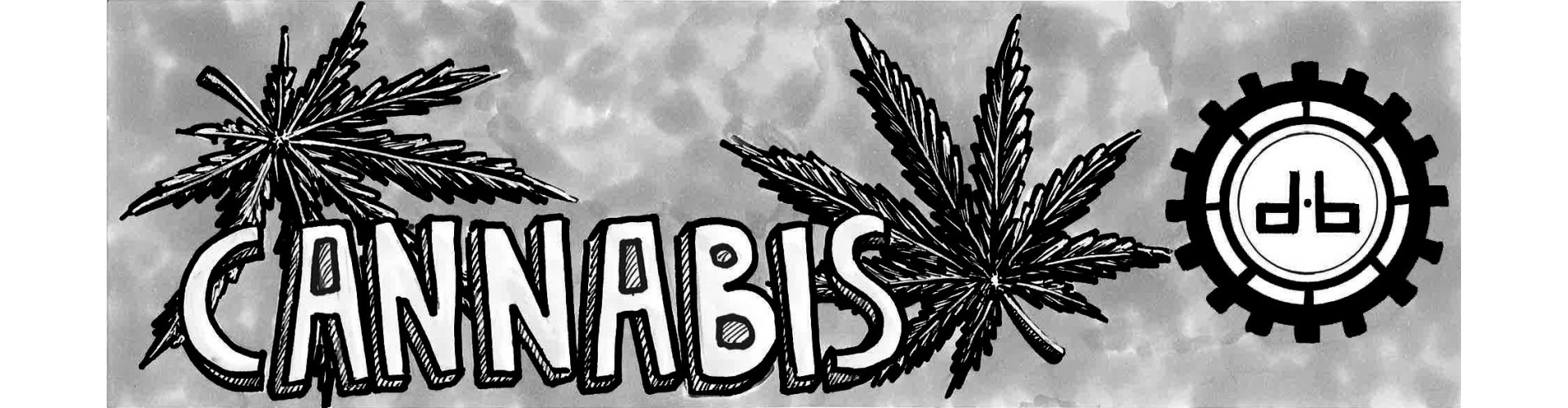 Sweat Feuille de Cannabis Homme, le choix des adeptes de la weed