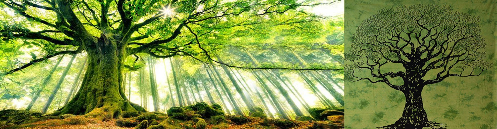 Tenture Arbre de Vie, la force de vie en déco, tenture arbre indienne
